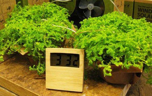 Reloj que funciona con energía limpia 2