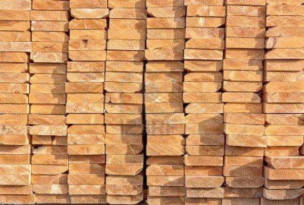 glosario anatomia de la madera