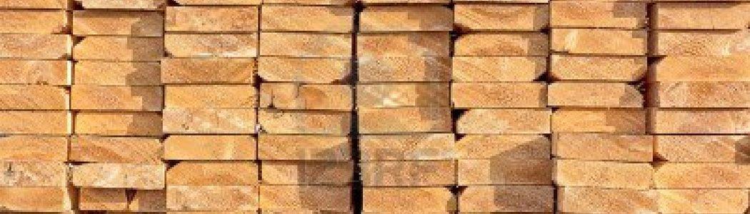 Glosario de la anatomía de la madera