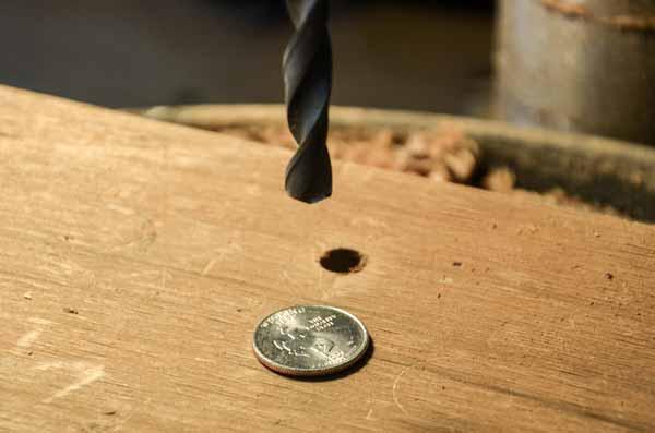 moneda en anillo preparacion