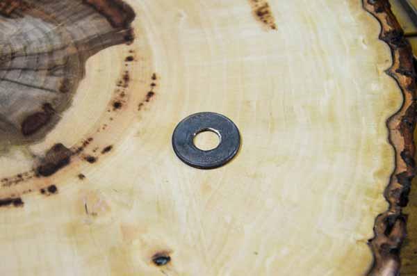 moneda en anillo templada
