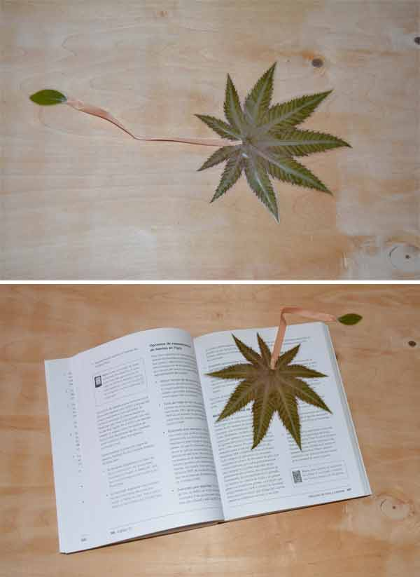manualidades con hojas plastificadas Señala paginas