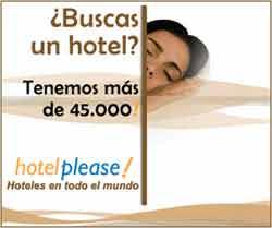 publicidad 1 - 8 hotel please 250