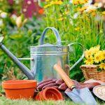 Consejos para jardines - destacada