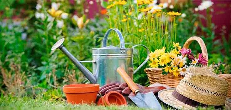 Consejos para jardines envidiables