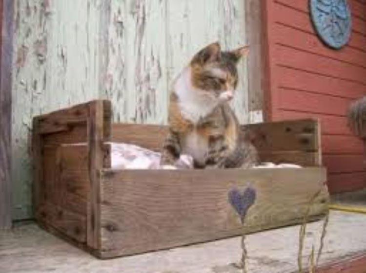 cajas de madera bricolaje - foto 9